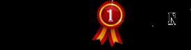 cropped-cropped-najlepsze-strony-logo.png